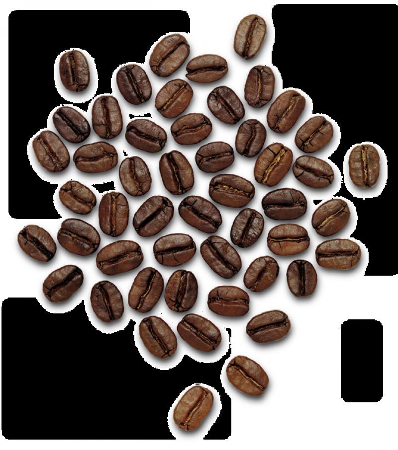 Coffee Beans Png Image Purepng Free Transparent Cc0 Png Image Library Coffee Beans Coffee Shop Logo Design Coffee Shop Logo