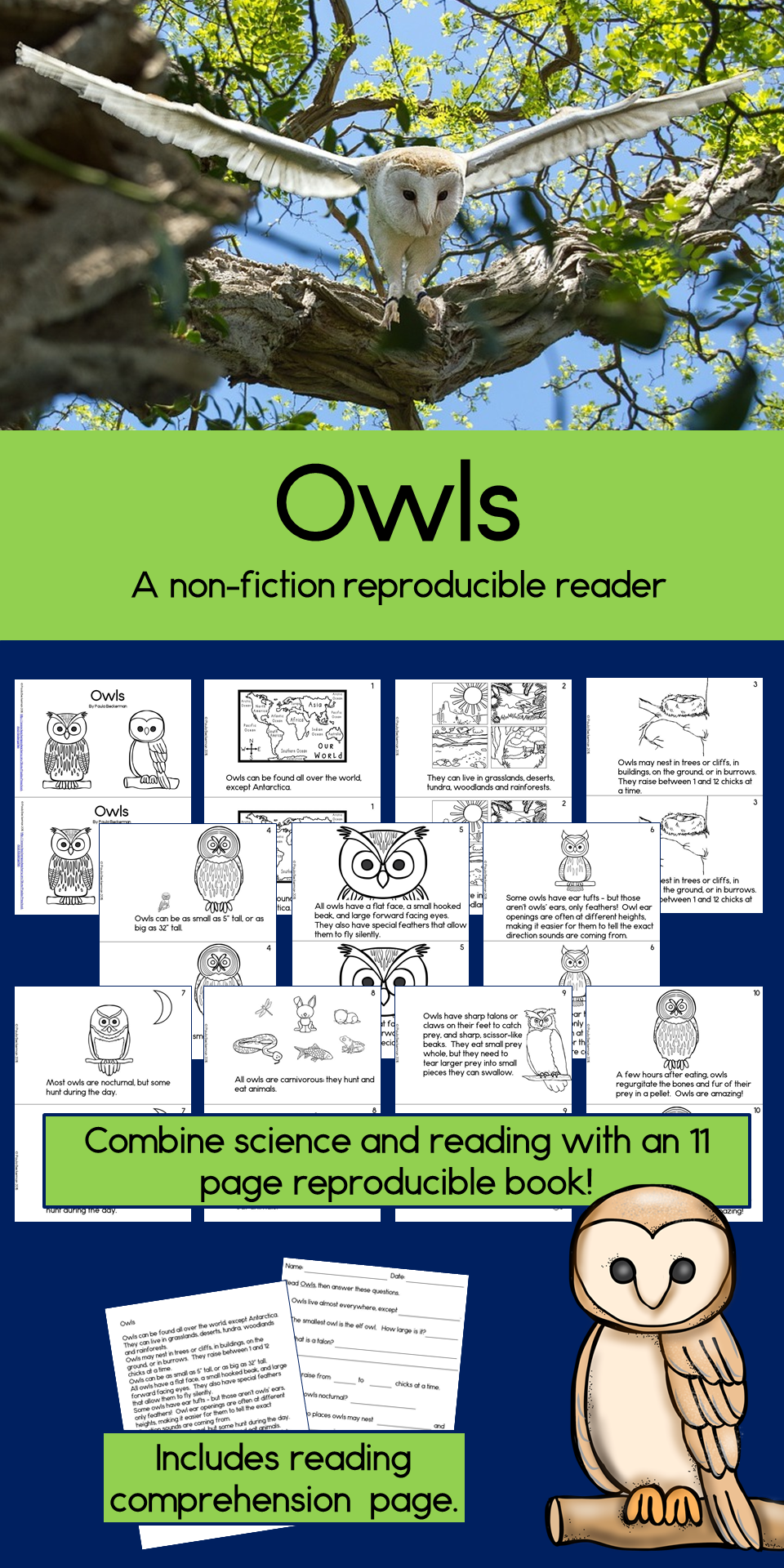 Owls Non-Fiction Guided Reading Book   Pinterest