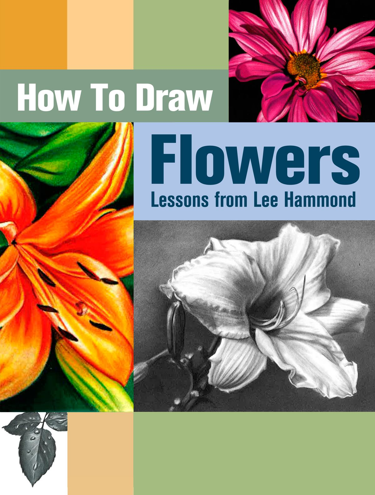 How to Draw Flowers Free Flower Drawing Guide Draw flowers