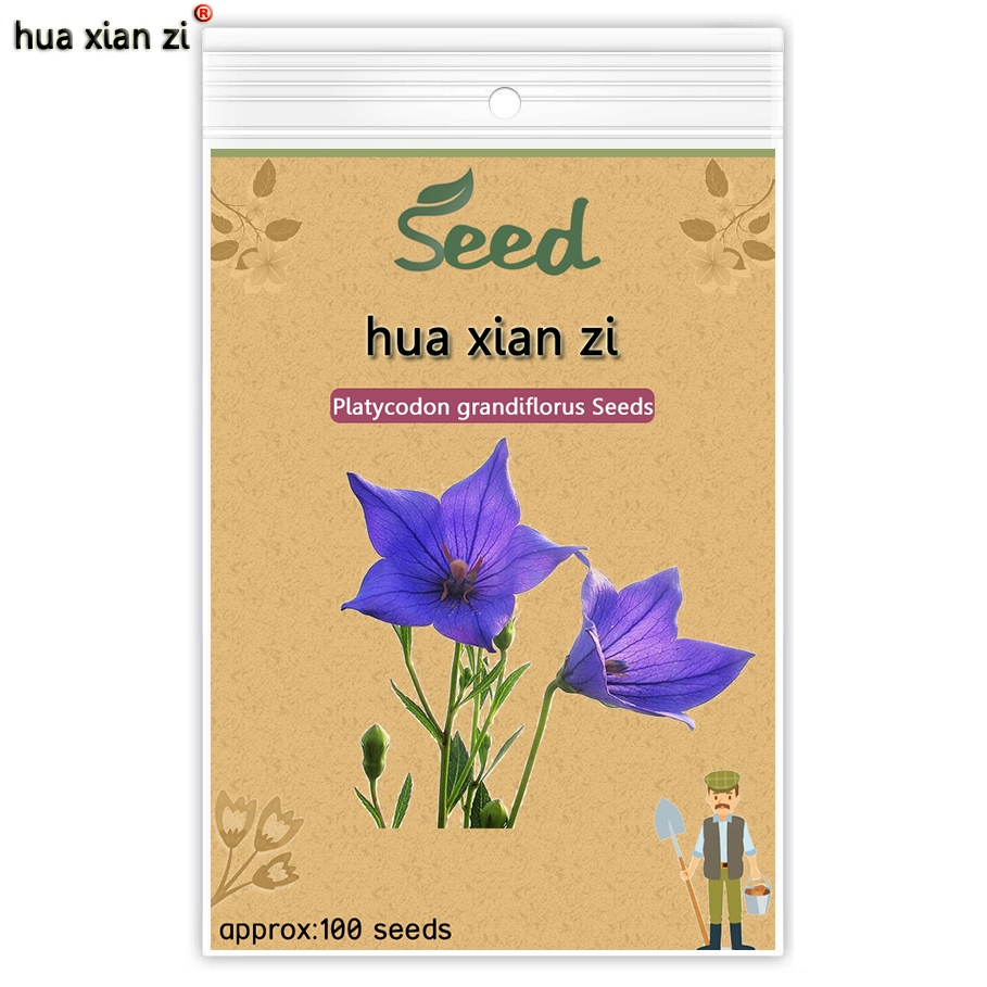 049 buy here blue balloon flower seeds platycodon grandiflorus cheap 100 seeds buy quality datura flower directly from china bonsai seeds suppliers mix color datura flower seeds datura mandala bonsai seed flower 100 izmirmasajfo
