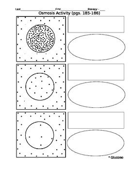 Osmosis and Diffusion Lab with Worksheet | Activities, Worksheets ...
