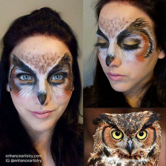 Barn Owl Make Up Face Paint Half Face Would Be Stunning With