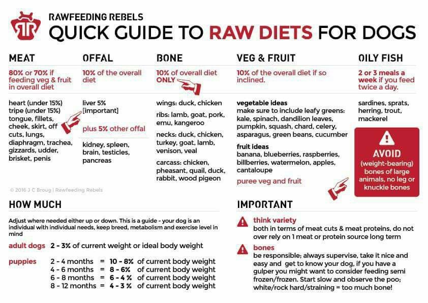 Pin by chris mulero on dogs raw feeding for dogs raw
