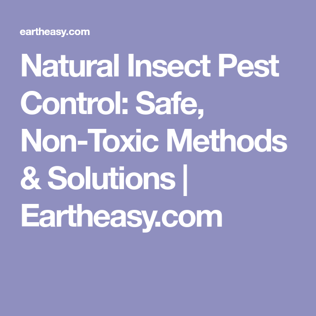 Natural Insect Pest Control