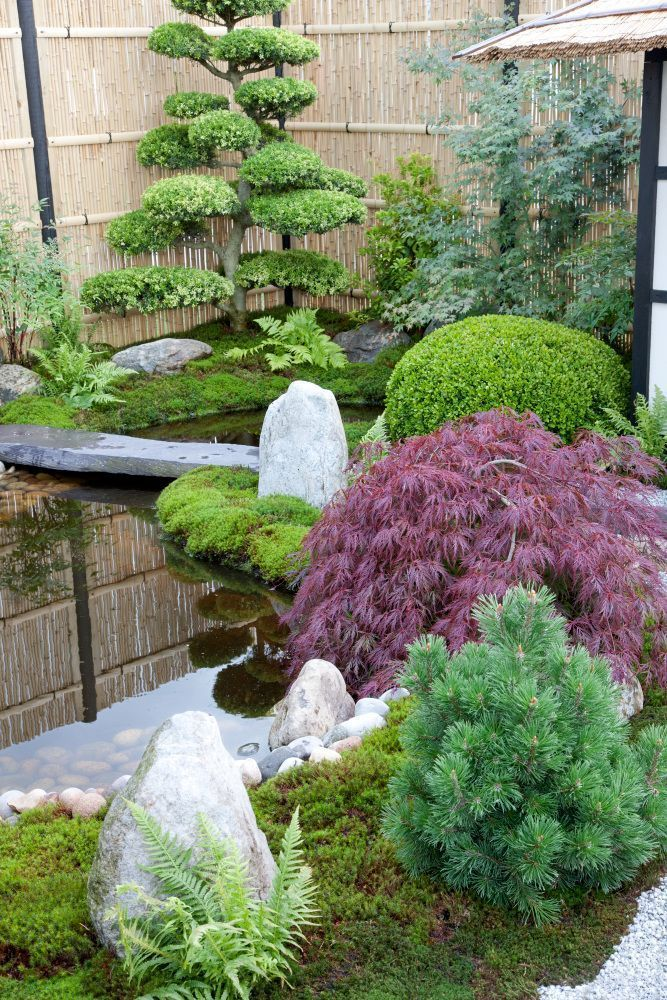 Photo of Japanesestyle garden