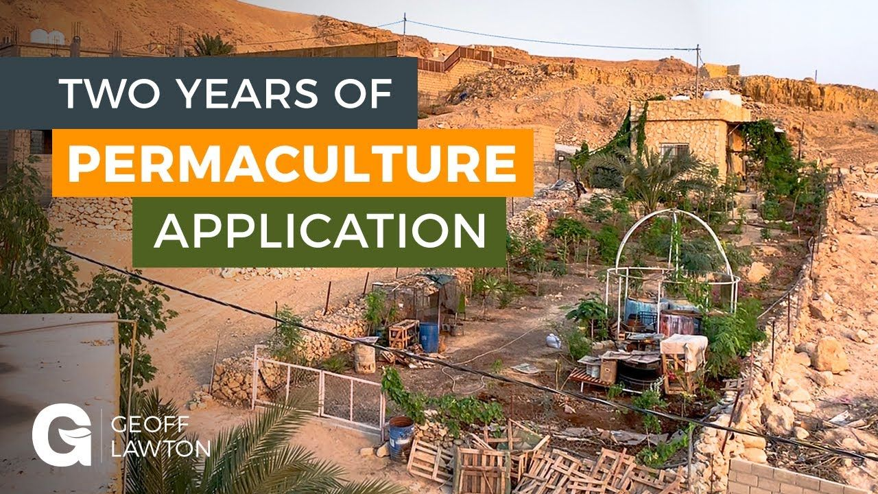 Two Years of Permaculture Application | Permaculture ...