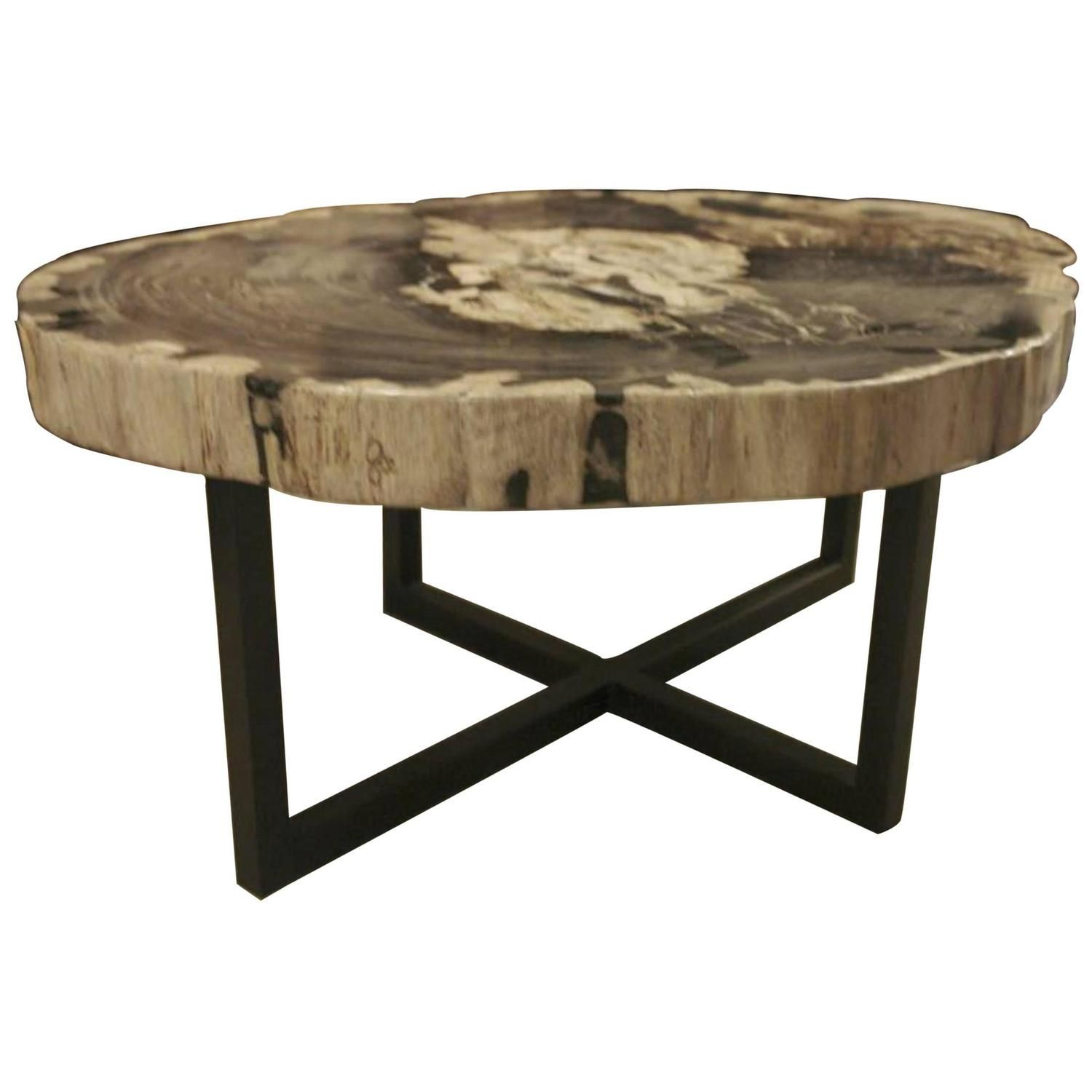 Petrified Wood Extra Large Extra Thick Coffee Table Indonesia Contemporary Coffee Table Table Petrified Wood [ 1500 x 1500 Pixel ]