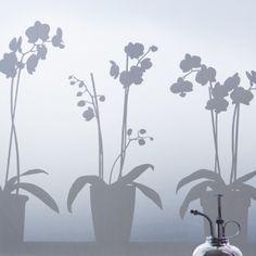 Vinilo orquídeas para ventana - Chanar                                                                                                                                                                                 Más
