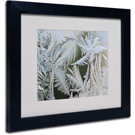 Trademark Fine Art Frost Pattern 1 inch Canvas Art by Kurt Shaffer, Black Frame, Size: 11 x 14, Multicolor