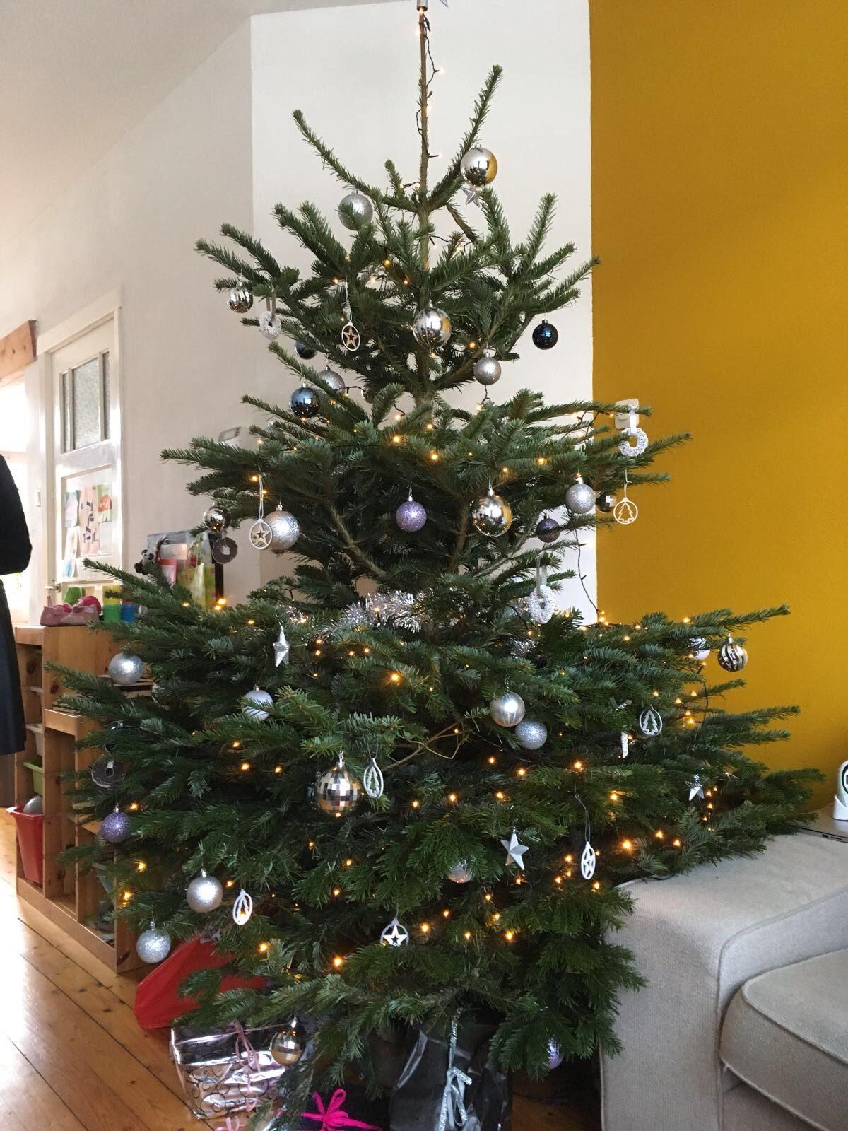 Echte Kerstboom Voor Margrietnl Kerst Kerstboom Gadero Kerst