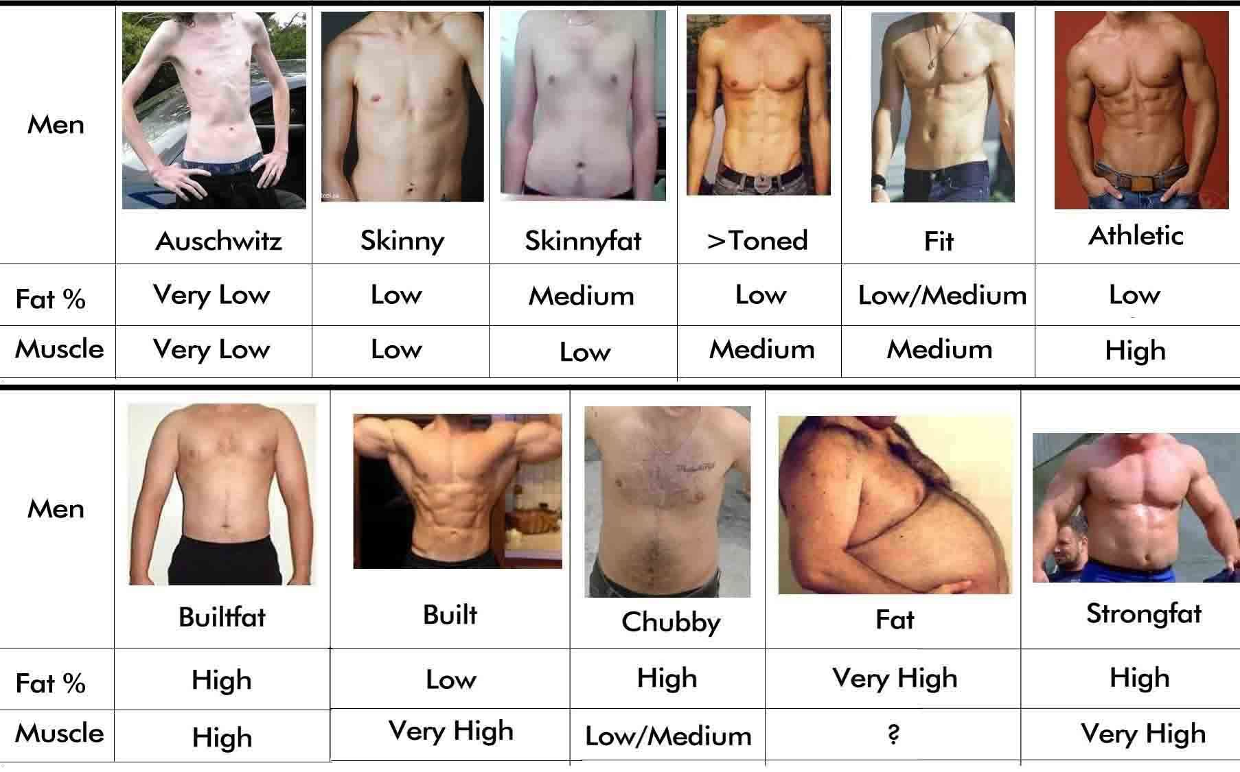 40 best ideas about Body Types on Pinterest | Male body, Types of ...