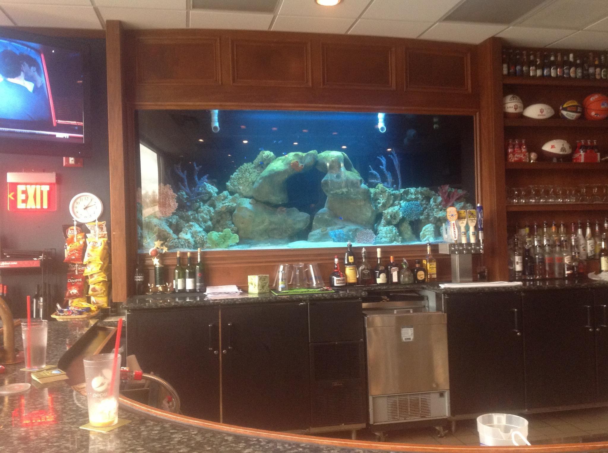 900 gallon Saltwater aquarium by Artistic Aquatics