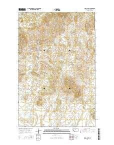 Tiger Butte MT topo map 1 scale 7 5 X 7 5 Minute Current
