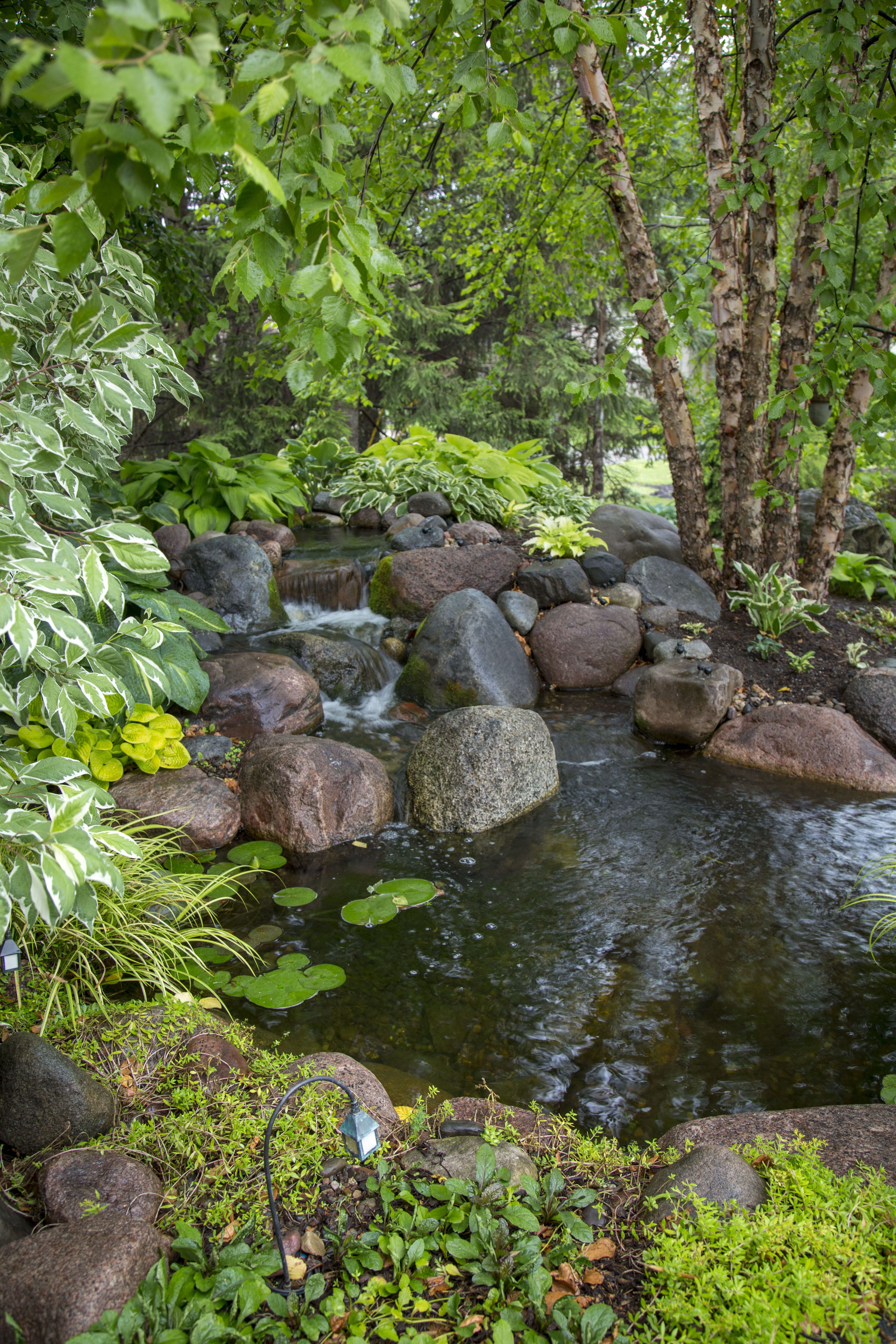 8 Spring Maintenance Tips For Your Pond Pond Maintenance 400 x 300