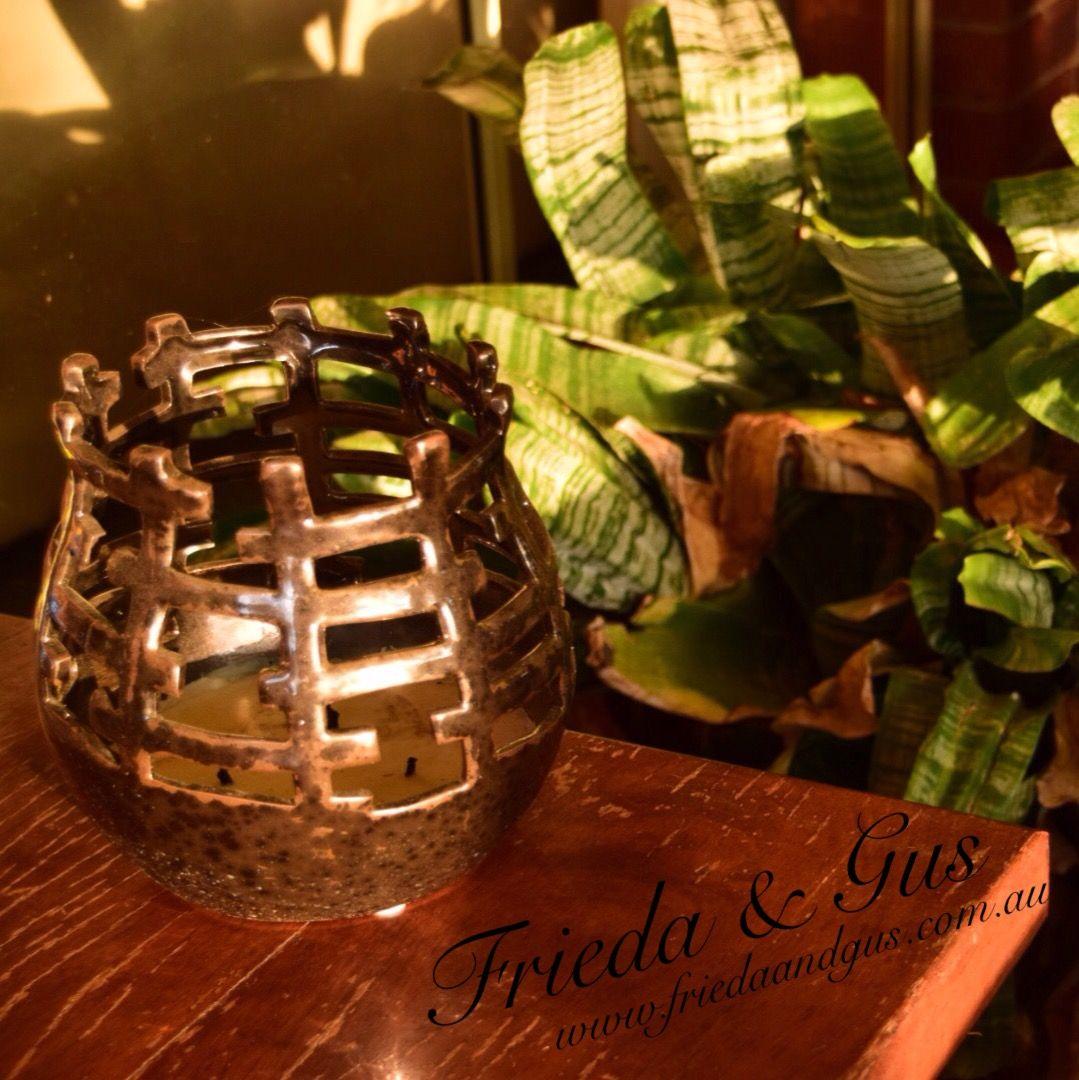 Winter sunshine cauldron  @friedaandgus brand rep search #friedaandgusbr