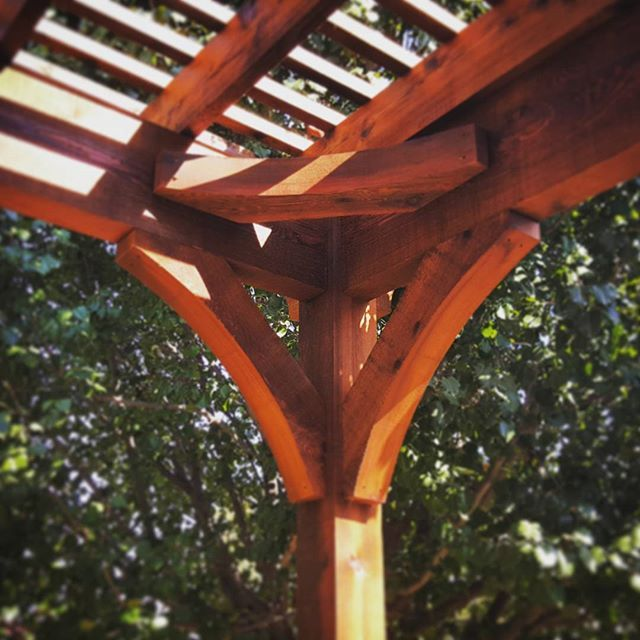 Curved Knee Braces Not Only Help With Stability But Take The Structure From Boring To Elegant Did You Know That Knee Br Pergola Curved Pergola Pergola Designs