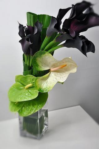 Green Anthurium And Dark Callas Modern Flower Arrangements Modern Floral Arrangements Hotel Flowers