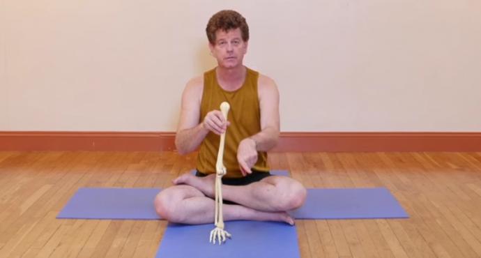 Online Yoga Anatomy Tutorial: Doug Keller on Healthy Arm Alignment ...
