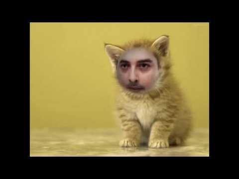DJ MAX WOLF PER CRAZY WOLF RADIO ANTENNA CAMPANIA
