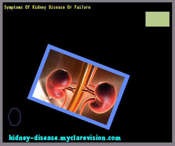 Symptoms Of Kidney Disease Or Failure 102901 Start