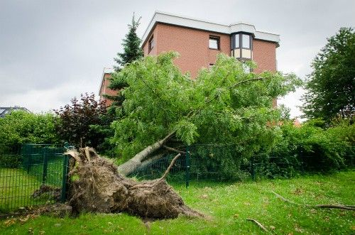 What Should I Do After A Heavy Storm A Home Maintenance