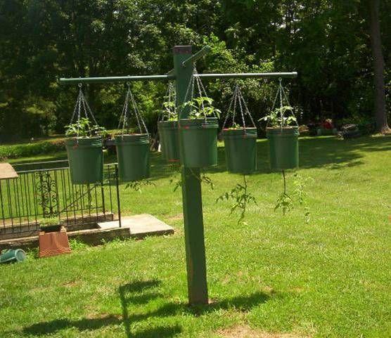 5 Vertical Vegetable Garden Ideas For Beginners: Upside Down Tom In 5 Gal Bucket