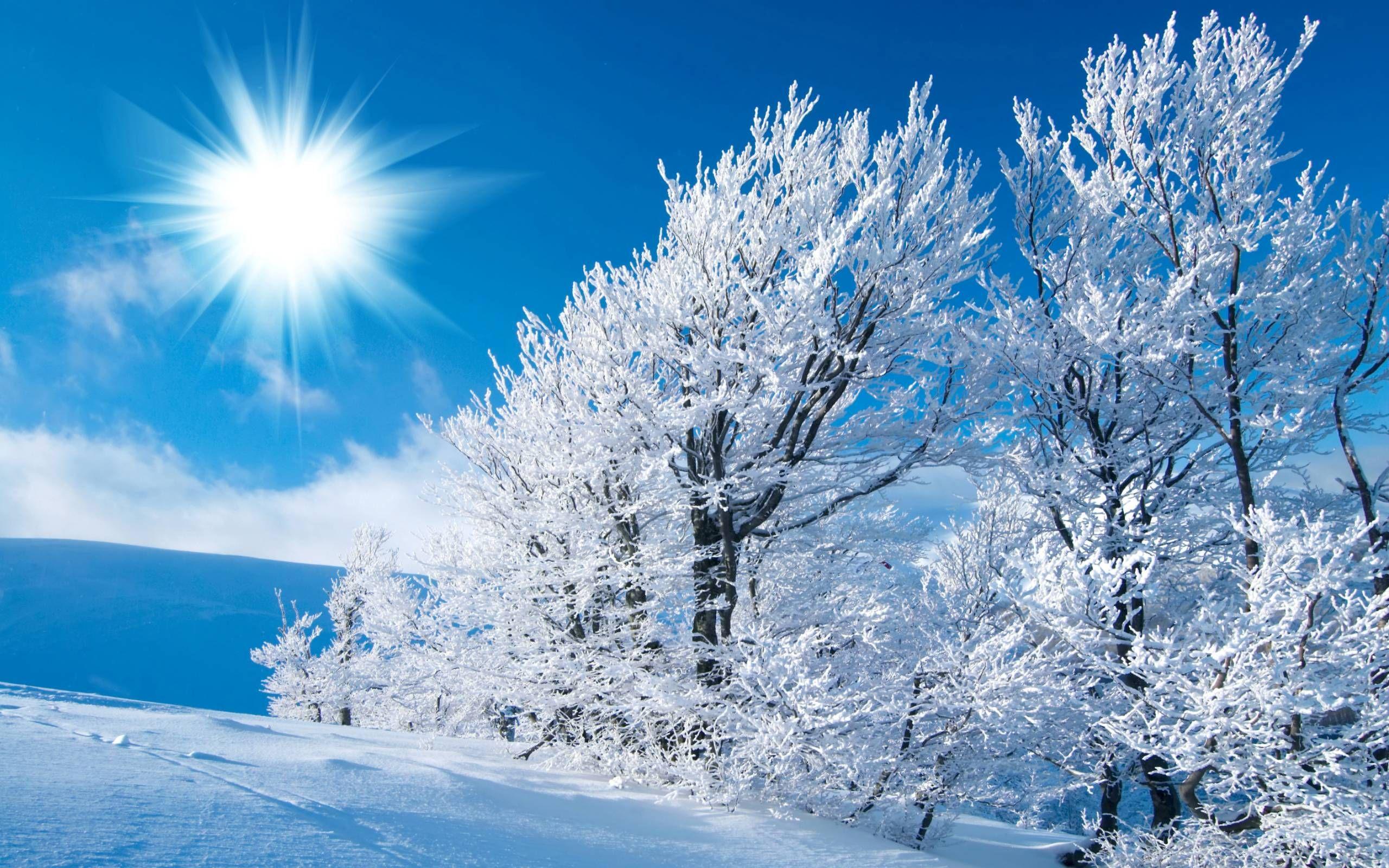 Free Winter Desktop Scenes
