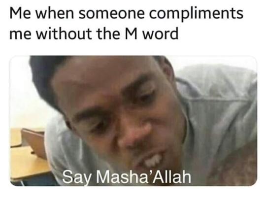 Muslim Memes Tumblr Muslim Meme Arabic Memes Funny Memes