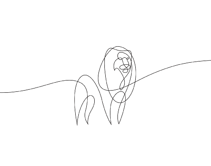 Fm Dibujos De Animales Hechos De Una Sola Linea Por Emma Stephane 08 Dibujos De Animales Tatuajes De Leo Dibujo Con Lineas