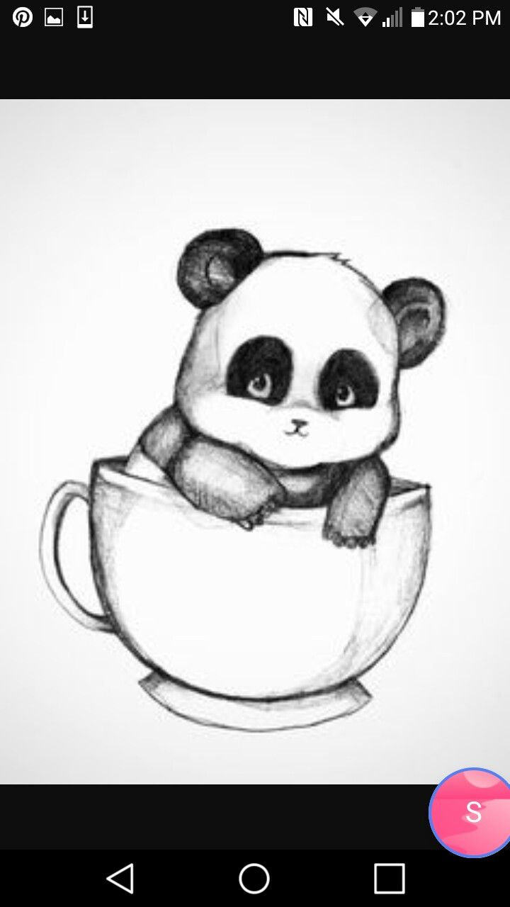 Baby panda in a cup draw in 2019 panda drawing drawings pencil