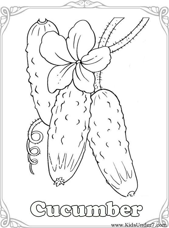 Pix For Gt Cucumber Coloring Page Vegetable Coloring Pages