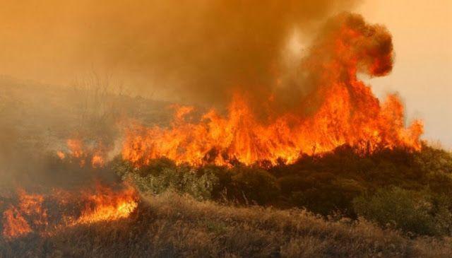 Υπο έλεγχο η φωτιά στη στη Θεσσαλονίκη