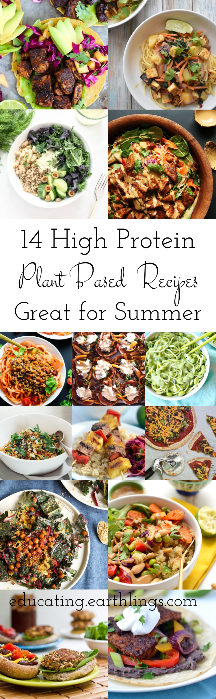 14 High Protein Plant Based Recipes Healthy Munchin