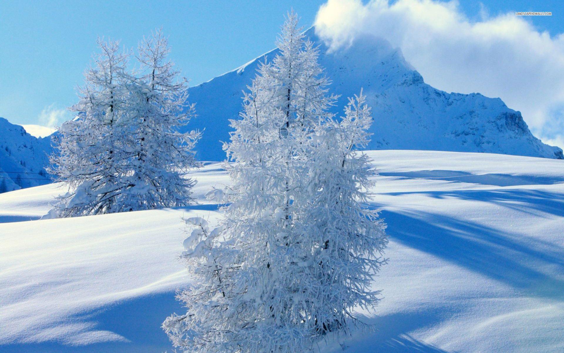 Fantastic Wallpaper High Quality Winter - 9e13ec5549dd8221d2406cae9d55e3c5  Trends_15281.jpg