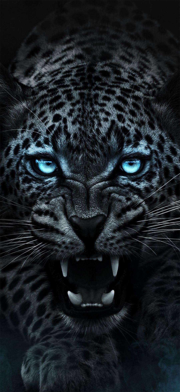 Dark Tiger Wallpaper By Efforfake On Deviantart In 2020 Wild Animal Wallpaper Tiger Wallpaper Jaguar Animal