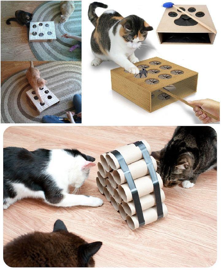 spiele f r katzen 13 ideen zum selbermachen ideen katzen selbermachen spiele tiere. Black Bedroom Furniture Sets. Home Design Ideas