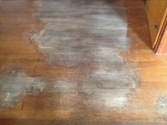 Removing Dog Urine Stains From Hardwood Floors With Images Hardwood Floors Old Wood Floors Staining Wood Floors