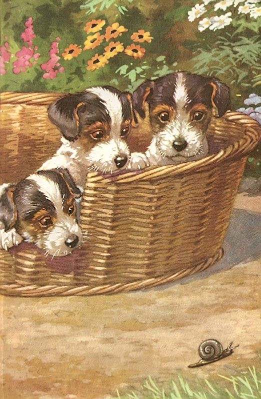 A. E. Kennedy illustration