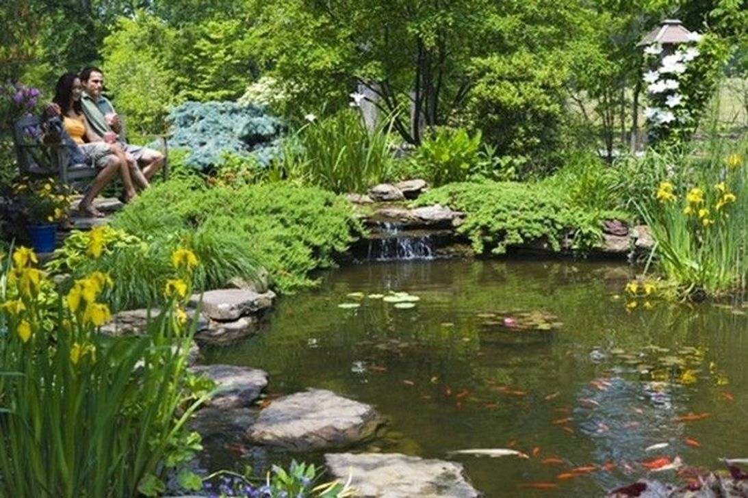 48 Modern Backyard Fish Pond Garden Landscaping Ideas is part of Modern garden Pool - Here are some great ideas for renovating your backyard  We'll cover general landscaping, furniture, ideas for your garden or yard, and some quick words on outdoor storage  LANDSCAPING So much to do with your backyard landscaping projects  There's flowers, terrain, trees and bushes, and pools to consider  Have you thought or heard of landscaping software for your computer  A modern day software program is not very expensive, and the layouts and design ideas are insane! The designs combos are endless, even down to the fine details of selecting from 1000's of flower varieties  Modern Backyard Fish Pond Garden Landscaping Ideas 01 Modern Backyard Fish Pond Garden Landscaping Ideas 02 Modern Backyard Fish Pond Garden Landscaping Ideas 03 Modern Backyard Fish Pond Garden Landscaping Ideas 04 Modern Backyard Fish Pond Garden Landscaping Ideas 05 Modern Backyard Fish Pond Garden Landscaping Ideas 06 Modern Backyard Fish Pond Garden Landscaping Ideas 07 Modern Backyard Fish Pond Garden Landscaping Ideas 08 Modern Backyard Fish Pond Garden Landscaping Ideas 09 Modern Backyard Fish Pond Garden Landscaping Ideas 10 Modern Backyard Fish Pond Garden Landscaping Ideas 11 Modern Backyard Fish Pond Garden Landscaping Ideas 12 Modern Backyard Fish Pond Garden Landscaping Ideas 13 Modern Backyard Fish [   ]