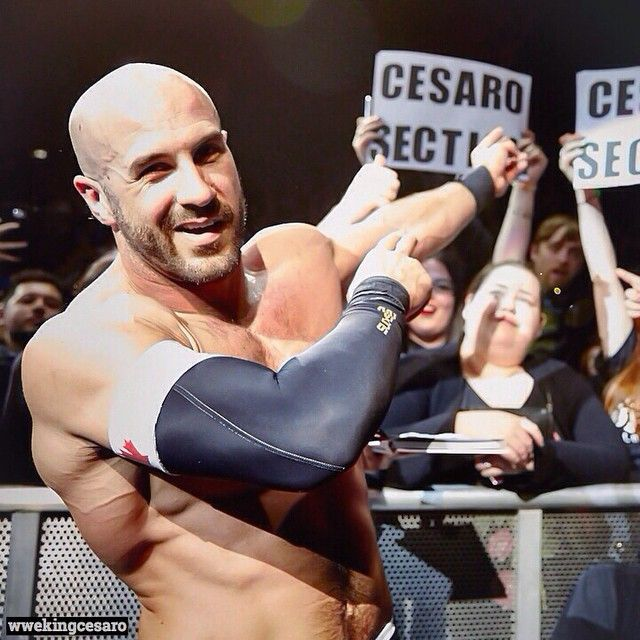 Wwe Wrestlers, Wrestling