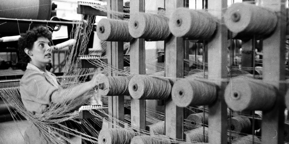 An operater guiding wool from spools onto an industrial loom in the Blackwood, Morton and Sons textile factory at Burnside in the Scottish town of Kilmarnock
