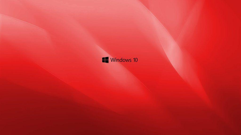 Desktop Backgrounds for Windows 10 with Purple Flower
