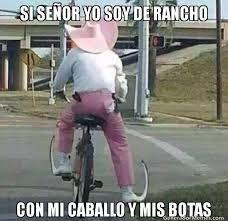 Memes De Frio Funny Photos Laugh Funny Memes