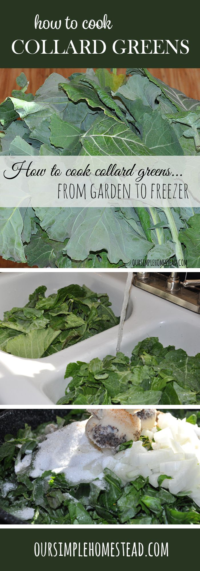 collard greens recipeEasy Collard Greens Recipe -  It's the day I wait for all fall…that third frost that tells me my collard greens are sweet enough to harvest from the garden.