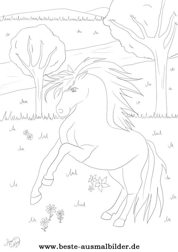 Beste Ausmalbilder Pencil Drawings Of Animals Horse Coloring Coloring Pages