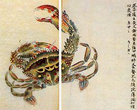 第1巻蟲類 イシガニ『千蟲譜』荒俣宏 世界大博物図鑑