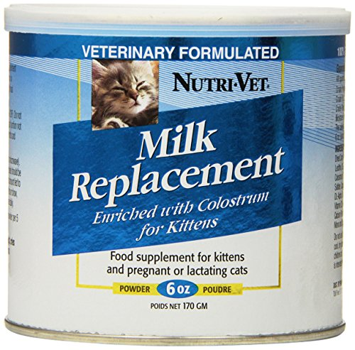The 25 Best Kitten Milk Replacers Of 2020 Cat Life Today In 2020 Milk Replacement Cat Health Care Kittens
