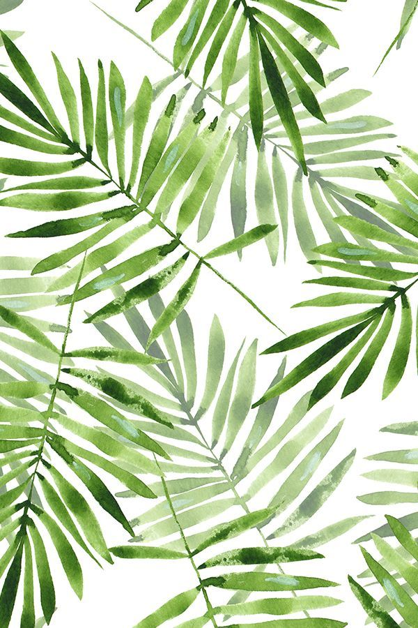 Watercolor Green Leaves Watercolor Clipart Green Leaf Green Png