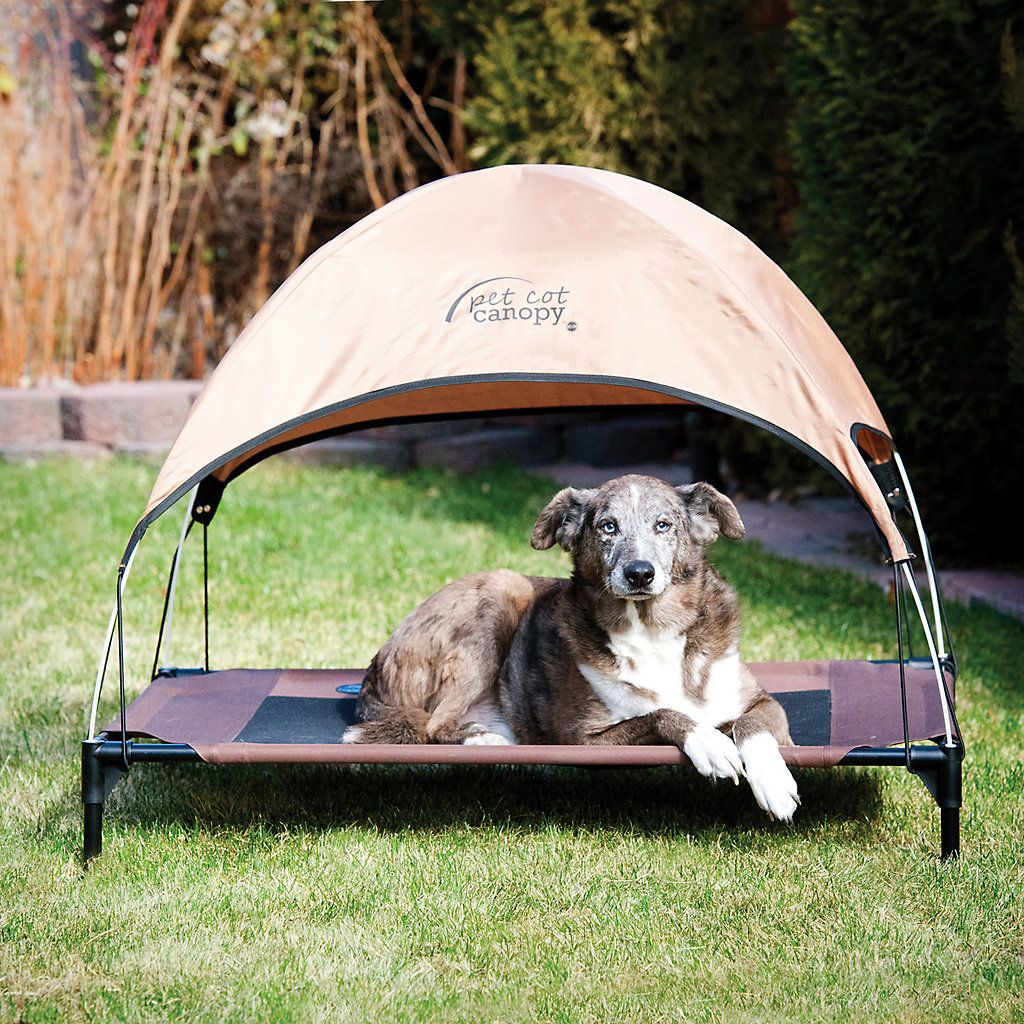 K&H Large Tan Pet Cot Canopy Cot canopy, Canopy outdoor