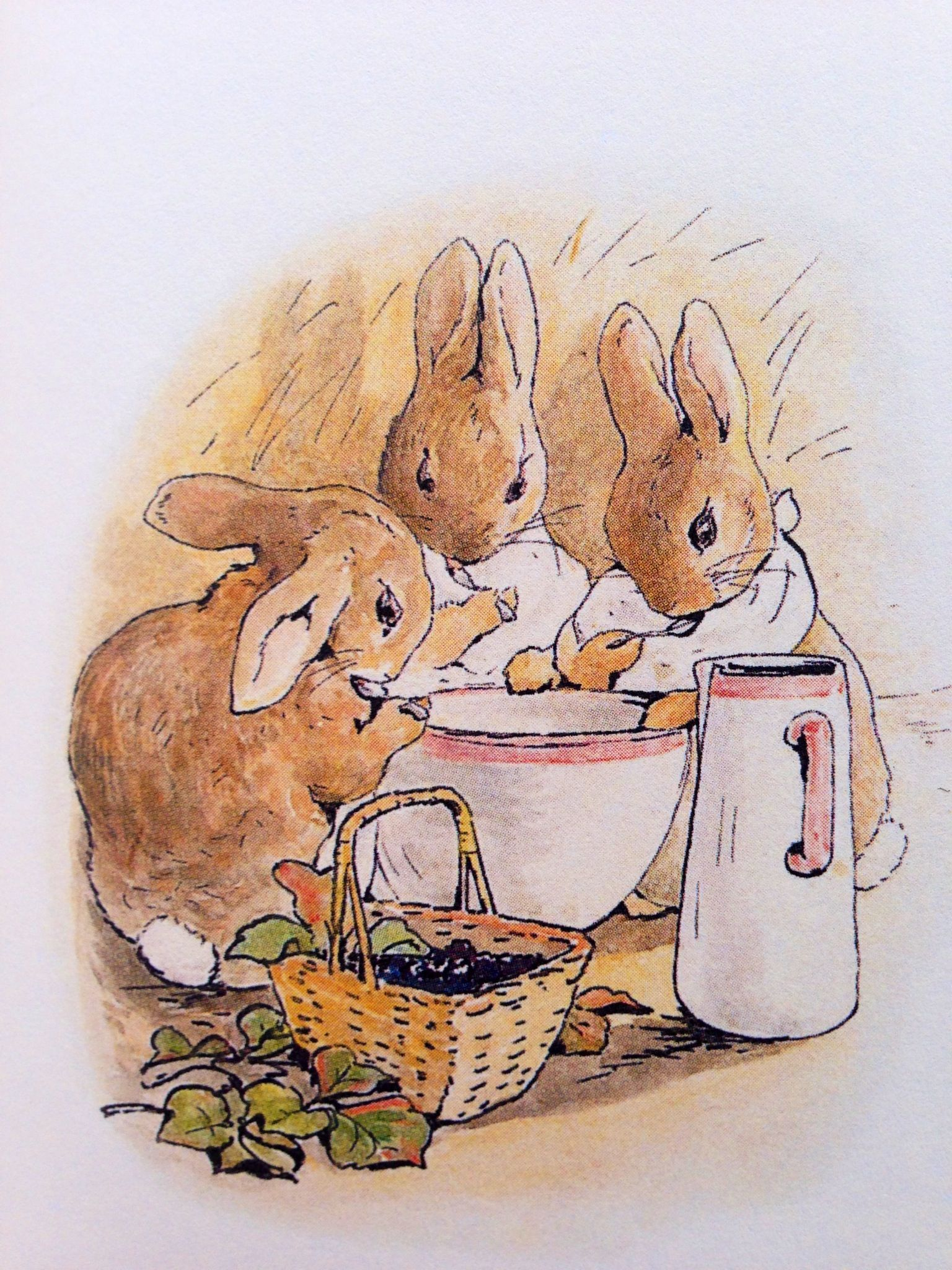 Peter Rabbit Beatrix Potter Bunnies